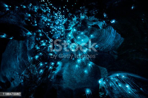 Abstract Art of Nature - Close Up of New Zealand Glow Worms in Cave
