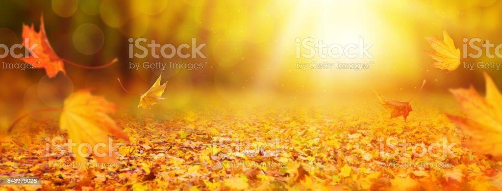 Abstrakt Herbst Hintergrund – Foto