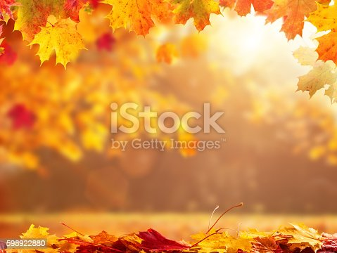 istock Abstract autumn background with copyspace 598922880