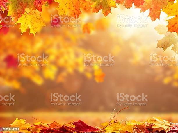 Abstract autumn background with copyspace picture id598922880?b=1&k=6&m=598922880&s=612x612&h=uxv koisy 9qzcakfcn9robpcu3jip2ufg3bytpemng=