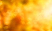 istock Abstract background autumn season 476776500