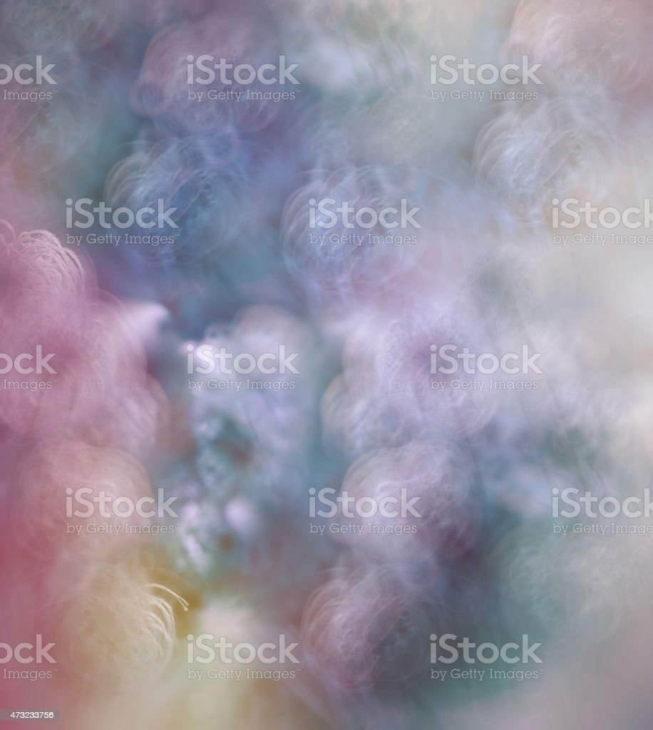 Abstract background (blurred de focus), Fluffy flower on wind stock photo