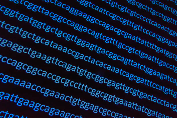 Abstract background, genetic code. Abstract background, genetic code. Sequence of nucleotide bases in a DNA fragment. nucleotide stock pictures, royalty-free photos & images