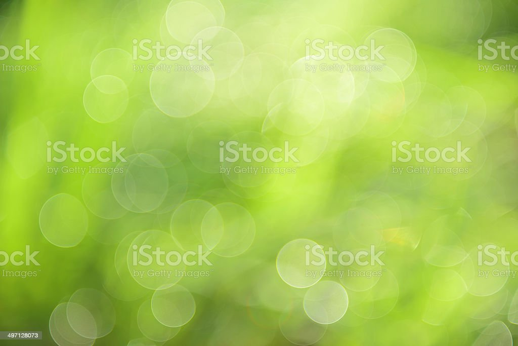 abstract background green bokeh stock photo