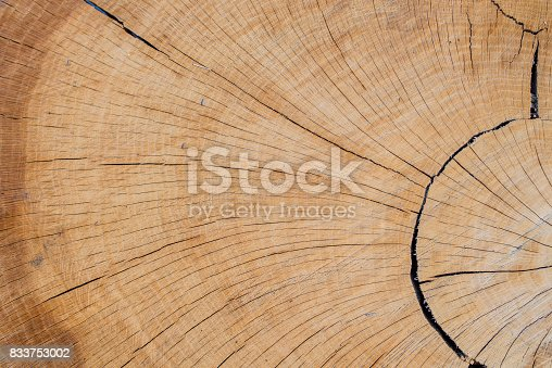istock Abstract background like slice of wood timber natural. 833753002