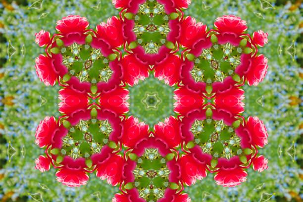 zusammenfassung hintergrund der floralen muster eines kaleidoskops - blumendrucktapete stock-fotos und bilder