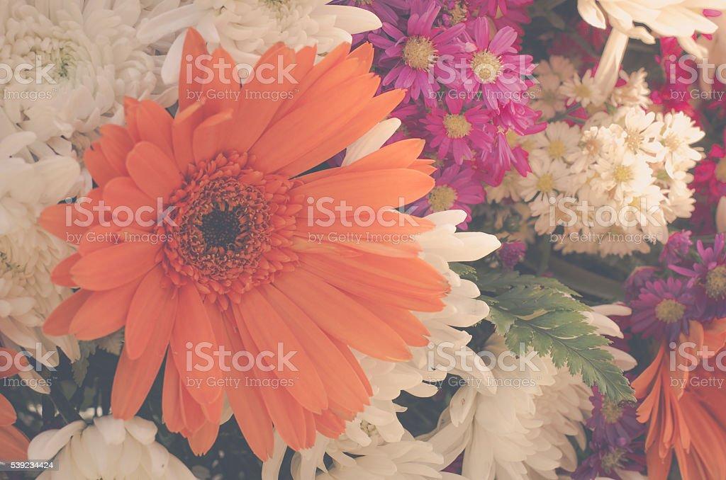 Fundo abstrato de flores.   Close-up.   foto royalty-free