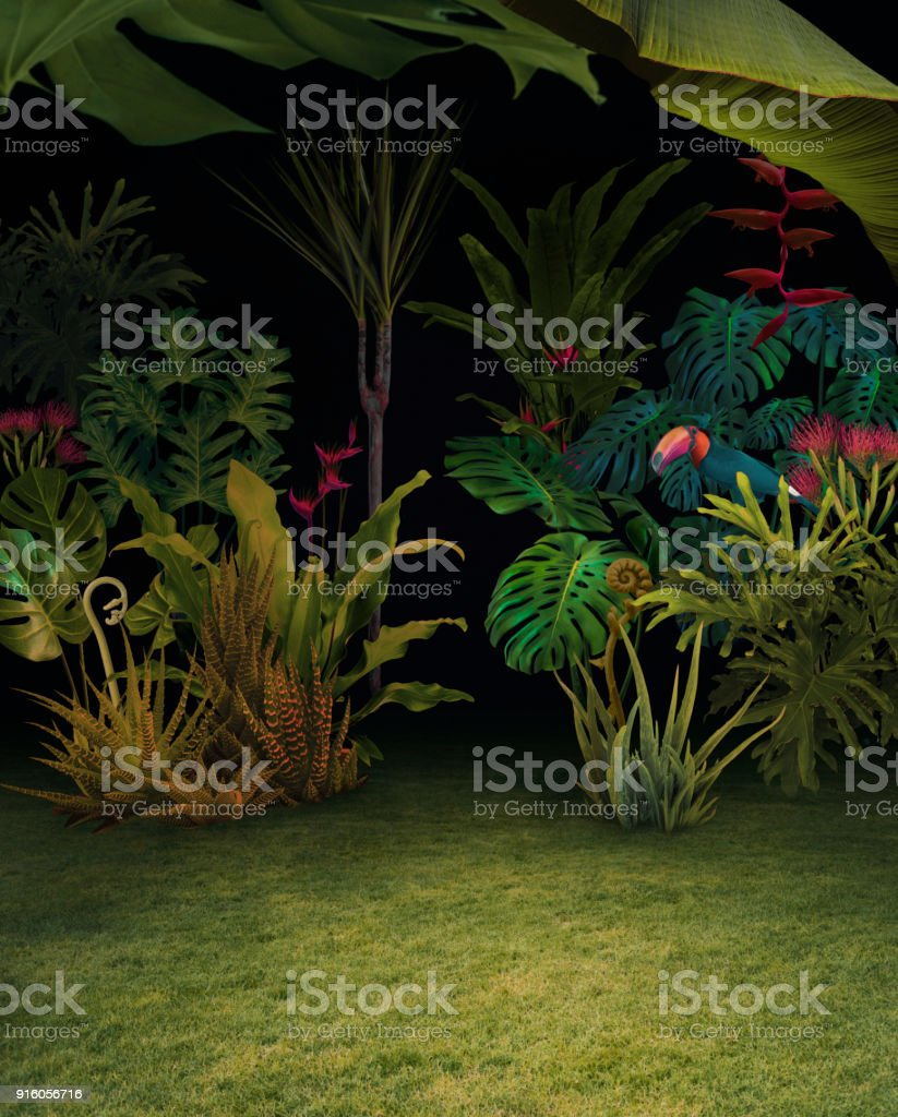 Abstract background of night jungle stock photo