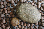Abstract background of round pebble stones from nature,background