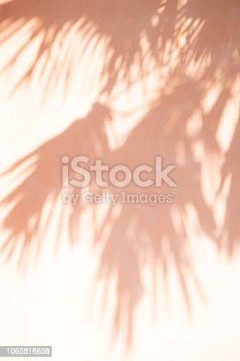 abstract shadow background of tree leaves on pastel tone wall.