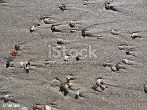 istock Abstract background of shell fragments on wet sand beach. 604861096