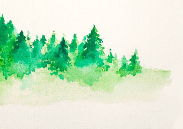 Abstract  background of watercolor landscape Watercolor Painting, Forest, Season, Winter, Abstract , Backgrounds,Christmas,Pine Tree,Landscape,Green,Nature treelined stock pictures, royalty-free photos & images