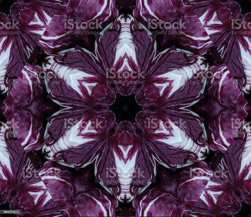 Fondo abstracto con diseño geométrico caleidoscópica de diferentes tonos de cabezas de repollo morado grande en el mercado - foto de stock