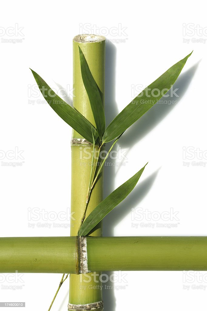 abstract bamboo zen royalty-free stock photo