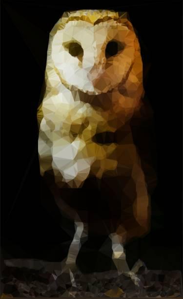 abstrakte schleiereule polygonaler stil bild auf schwarzem hintergrund - eule zeichnung stock-fotos und bilder