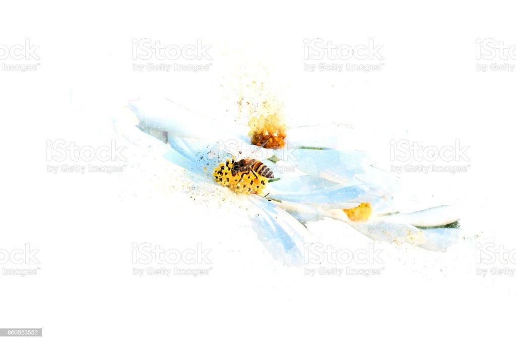 Abstrait beau abeille sur la fleur rose qui fleurit sur fond d'aquarelle. - Photo