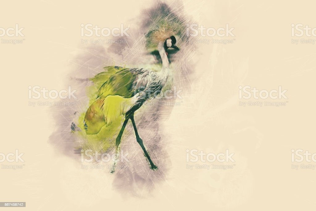 Abstract beautiful bird in the wild on watercolor painting background. stock photo
