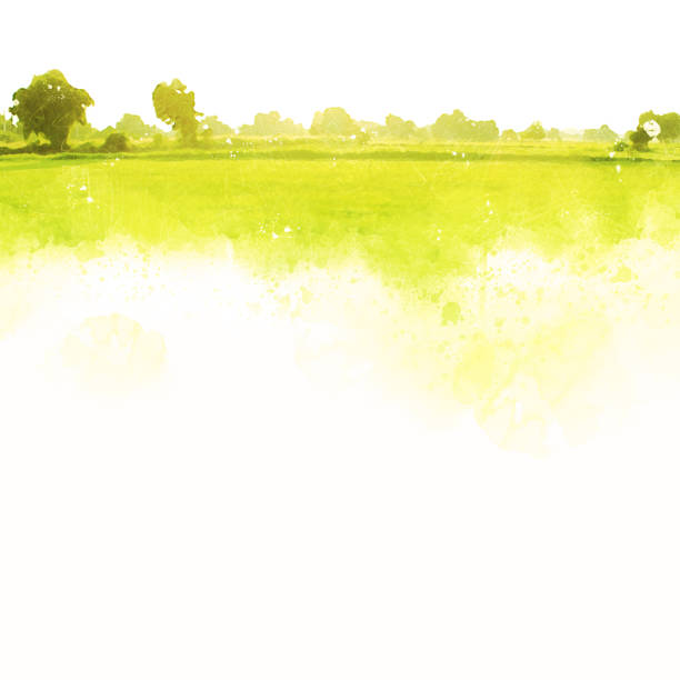 abstrakt vackra träd och landskap på färgglada akvarellmålning bakgrund. - måla tavla bildbanksfoton och bilder
