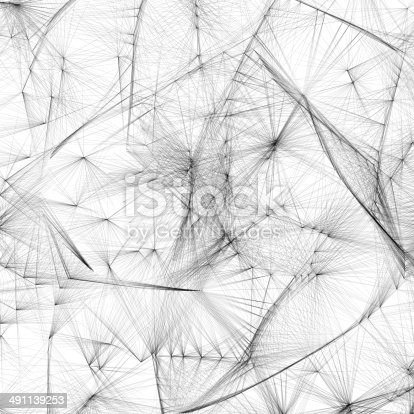 abstract black and white line shape background,dandelion detail.technology concept background.