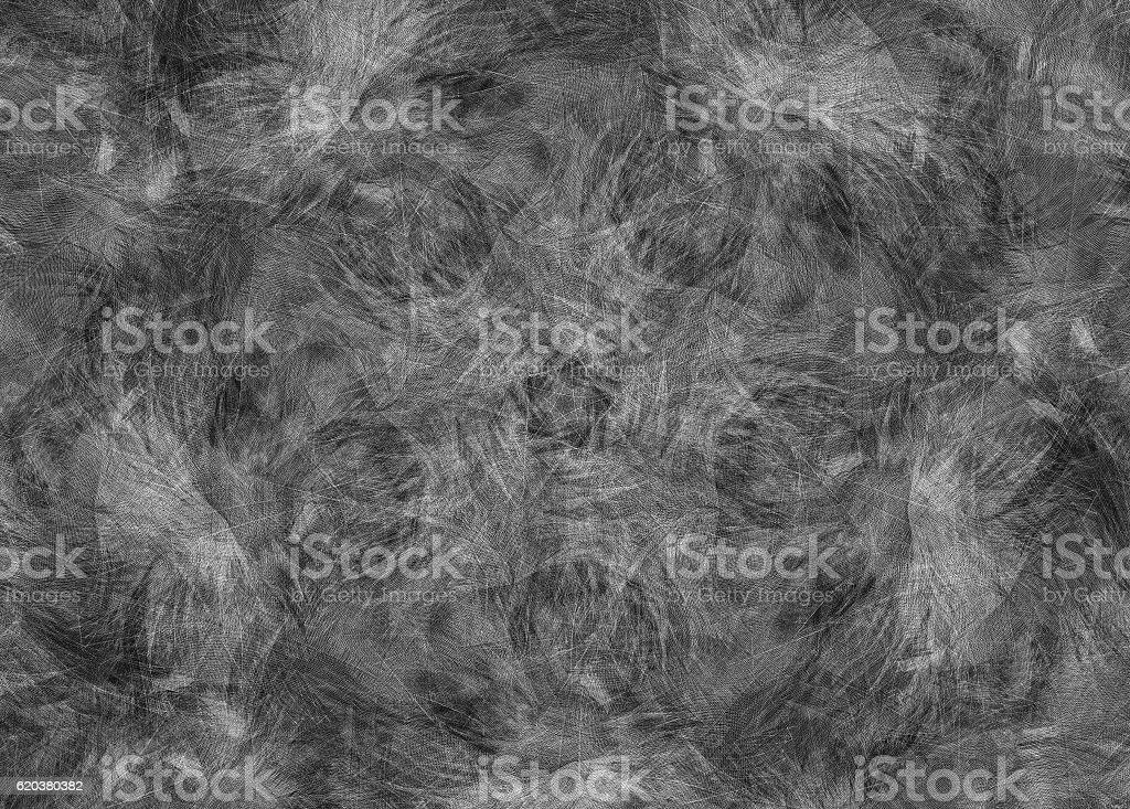 Abstract black grey feather background zbiór zdjęć royalty-free