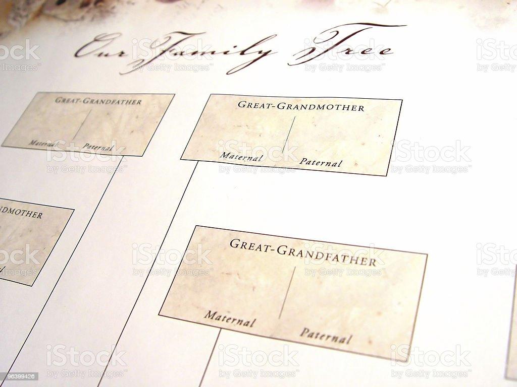 抽象ブランク家族の木 - アクセスしやすいのロイヤリティフリーストックフォト