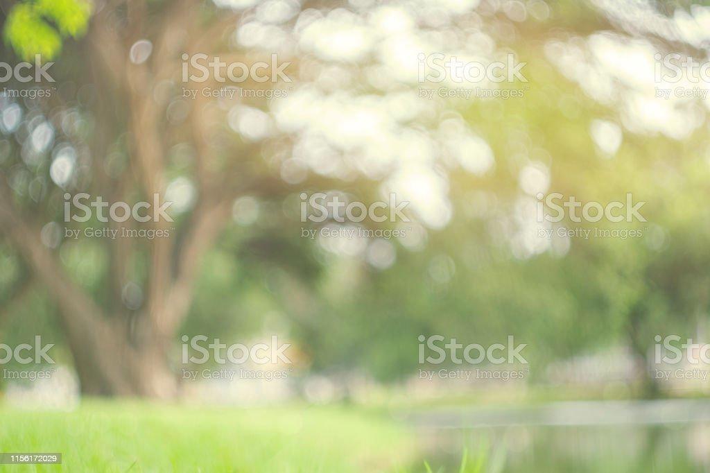 Abstrakte Unschärfe grün Park im Frühjahr Outdoor Hintergrundkonzept für verschwommenes schönes Naturfeld, Horizont Herbst Wiesenszene, Öko-Umwelt Tag in Sommerblüte. - Lizenzfrei Abstrakt Stock-Foto