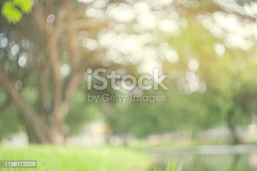 istock Abstract blur green park in spring outdoor background concept for blurry beautiful nature field, horizon autumn meadow scene, eco environment day in summer blossom. 1156172029