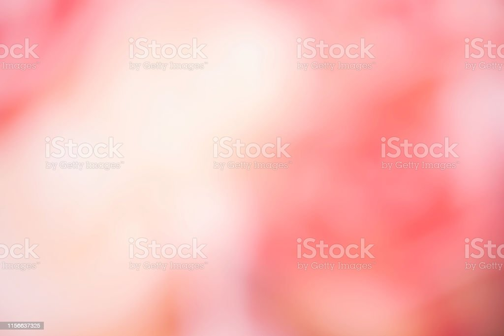 Abstract blur light gradient pink soft pastel color wallpaper...