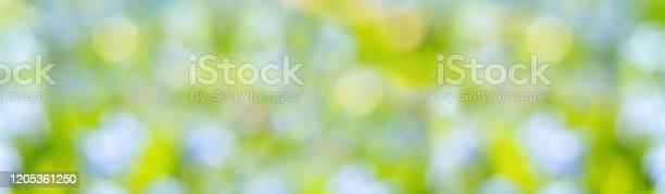 Abstract blur summer background green blue and yellow blurred picture id1205361250?b=1&k=6&m=1205361250&s=612x612&h=thvwcqzi6si4g gca8x hzvwv0tqu5nsal42nz3qe6u=