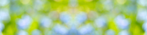 Abstract blur summer background green blue and yellow blurred picture id1210246225?b=1&k=6&m=1210246225&s=612x612&w=0&h=bupx 4 16qkpzodevl hrsjnueiumi7zbrl4p534r5i=