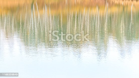 Abstract blurred bright fall background in pastel shades. Reflection of autumn forest in the lake.