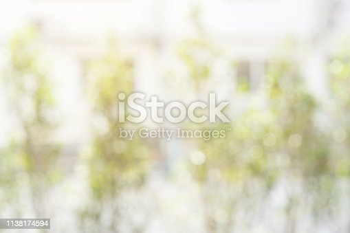 1067054470istockphoto abstract blurred clean nature forest with sunny and bokeh light in home garden background 1138174594