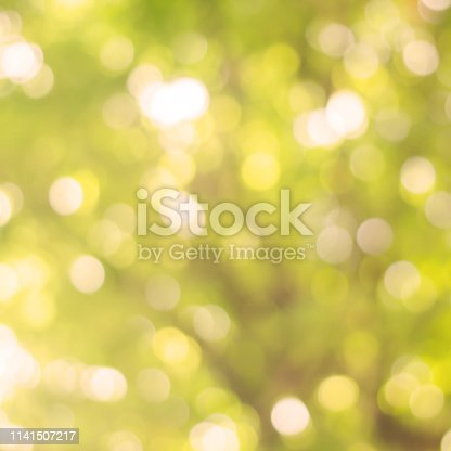 1067054470istockphoto abstract blurred clean nature forest with sunny and bokeh light in public park background 1141507217