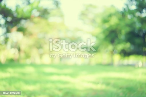 istock abstract blurred green color nature public park outdoor background at spring and summer season with sunlight effect and vintage color tone for design concept 1041155610