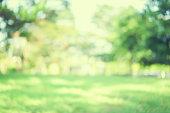 春にぼやけた緑色自然公園屋外背景を抽象化し、日光の夏シーズン効果とビンテージ デザインのコンセプトの色調