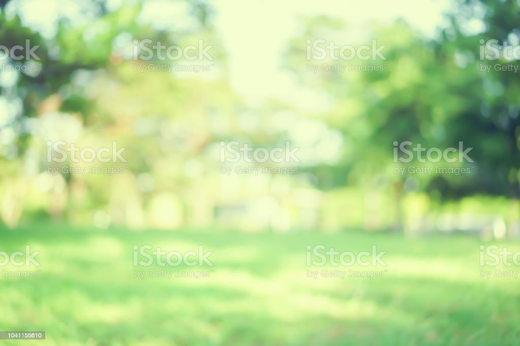 abstract blurred green color nature public park outdoor background at spring and summer season with sunlight effect and vintage color tone for design concept stock photo