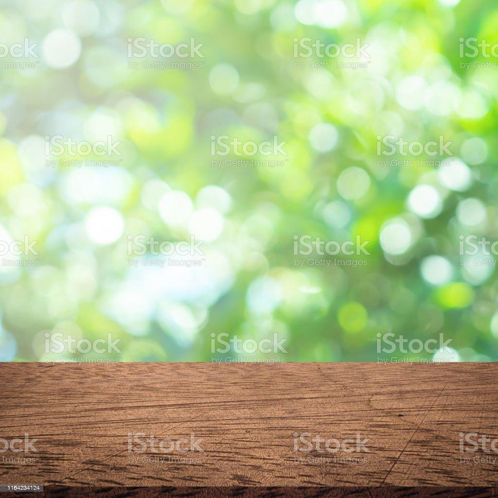 Hojas Abstractas De Vegetación Borrosa De árbol En El Fondo
