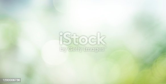 Abstract blurred greenery leaves panoramic background