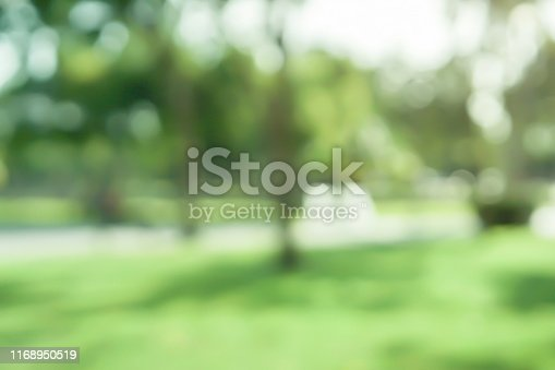 istock abstract blurred leaves of tree in nature forest with sunny and bokeh light  at  public park background for good environment concept 1168950519