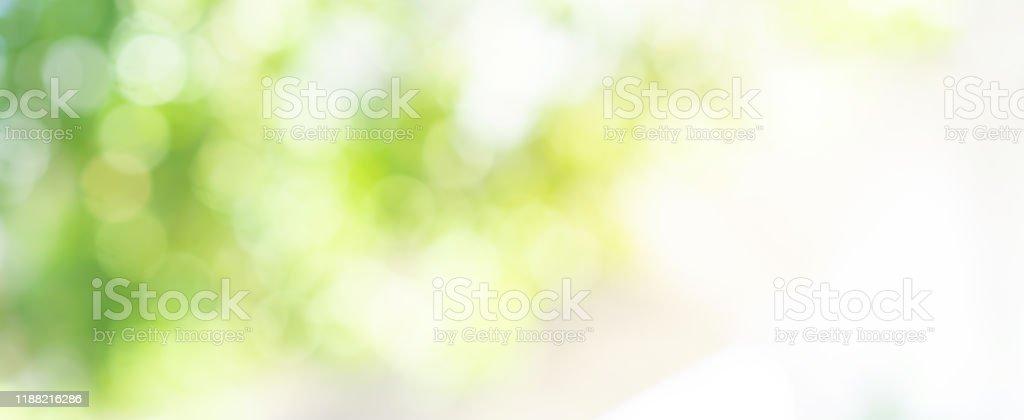 abstrakte verschwommene Blätter von Bäumen im Naturwald mit sonnigem und bokeh Licht im öffentlichen Park Hintergrund für gute Umweltkonzept - Lizenzfrei Abstrakt Stock-Foto
