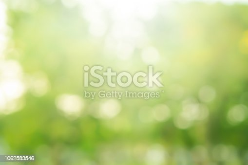 istock abstract blurred nation public park outdoor in autumn season for background design concept 1062583546