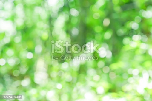 1067054470istockphoto abstract blurred nation public park outdoor in autumn season for background design concept 1067628032