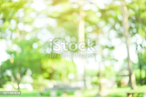 1067054470istockphoto abstract blurred nation public park outdoor in autumn season for background design concept 1071437518