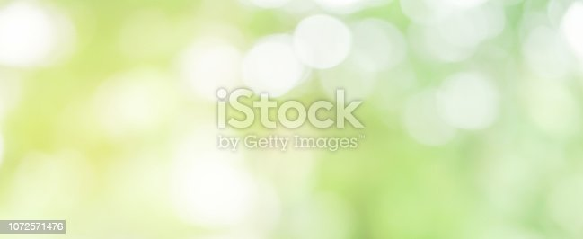 abstract blurred nation public park outdoor in autumn season for background design concept