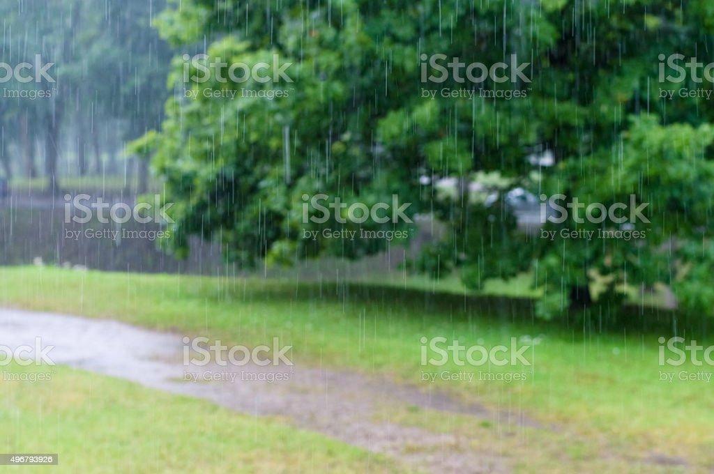 Abstrakt verschwommen Regen-Tropfen Titel mit Bäumen im Hintergrund – Foto