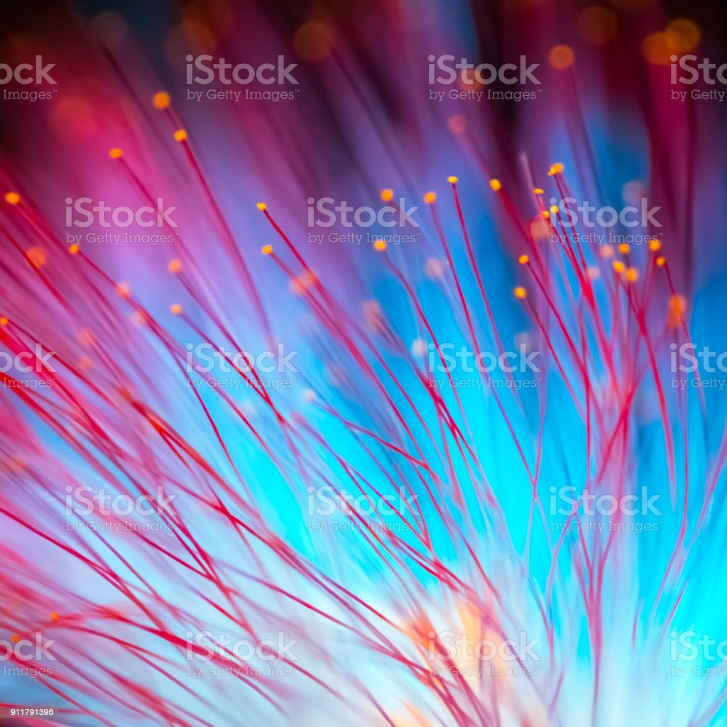 Abstract blurred red and blue light and flower natural background. stock photo