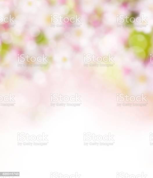 Abstract blurry spring background picture id535315743?b=1&k=6&m=535315743&s=612x612&h= ukgmsicwdgczhemxsmin 81b0ahqkqk p1m9dncit8=