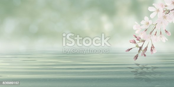 istock Abstract Bokeh Background Water with leaves and flowers from blossom plant 826989152