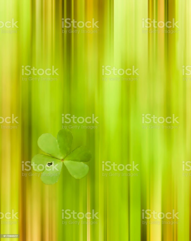 Abstract bright green motion blur of clover field with one Shamrock in focus with heart shaped leaf stock photo