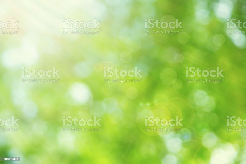 abstract bright spring with bokeh sunlight background stock photo